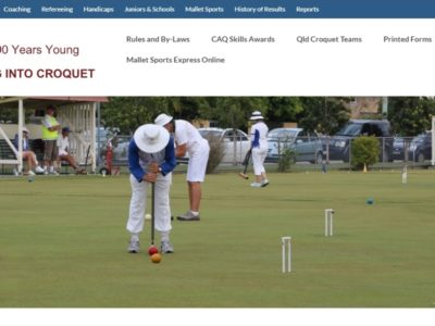 Swing into Croquet